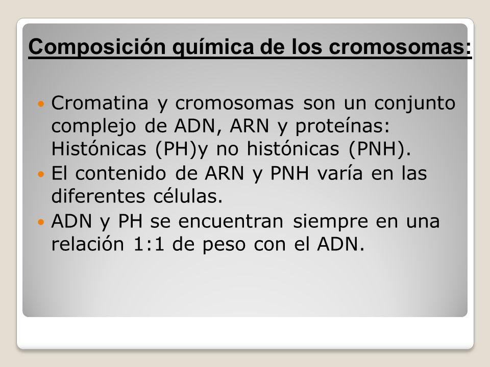 Cromatina y cromosomas son un conjunto complejo de ADN, ARN y proteínas: Histónicas (PH)y no histónicas (PNH). El contenido de ARN y PNH varía en las