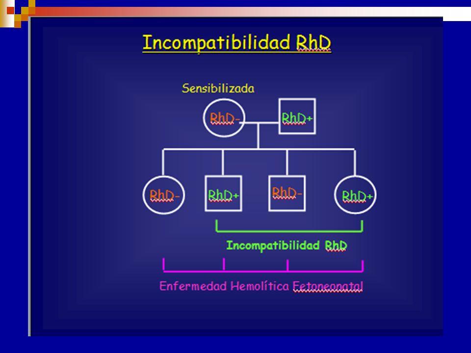 ENFERMEDED HEMOLÍTICA DEL RECIÉN NACIDO (EHRN) * Ictericia Signos * Anemia * Esplenomegalia * Hepatomegalia Causas + común ( Incompatibilidad sanguíne