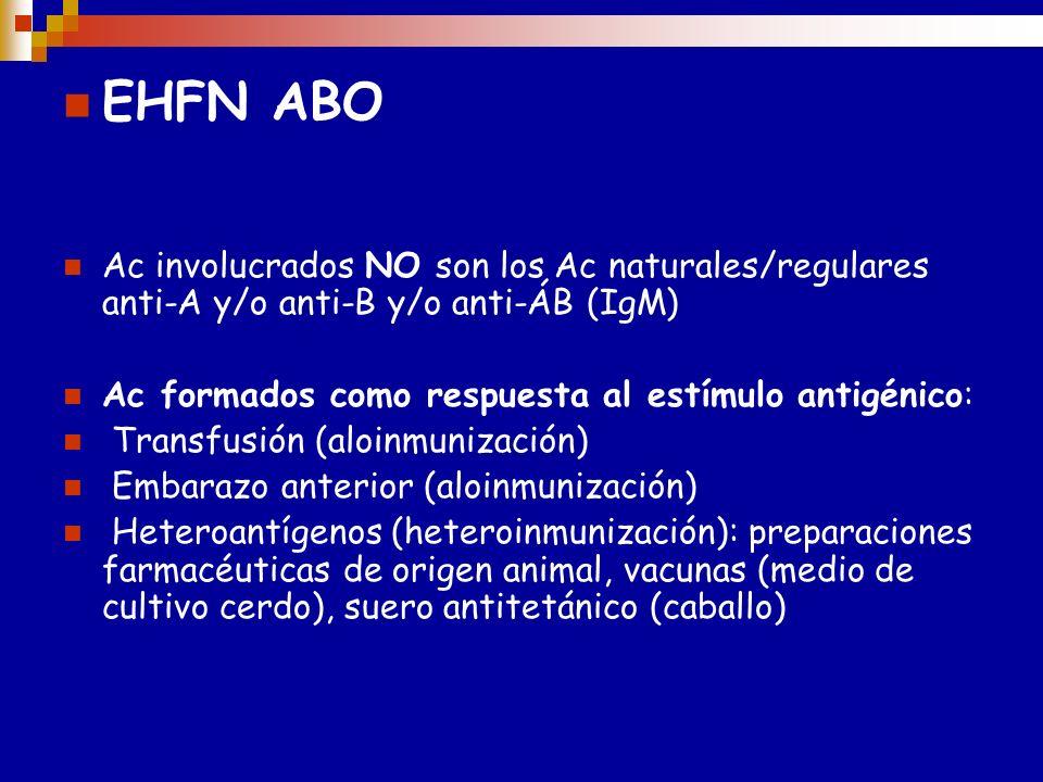 E H F N ----A B O Caso más frecuente Madre O Y feto A Frecuentemente sin significado clínico Se puede presentar en el primer embarazo