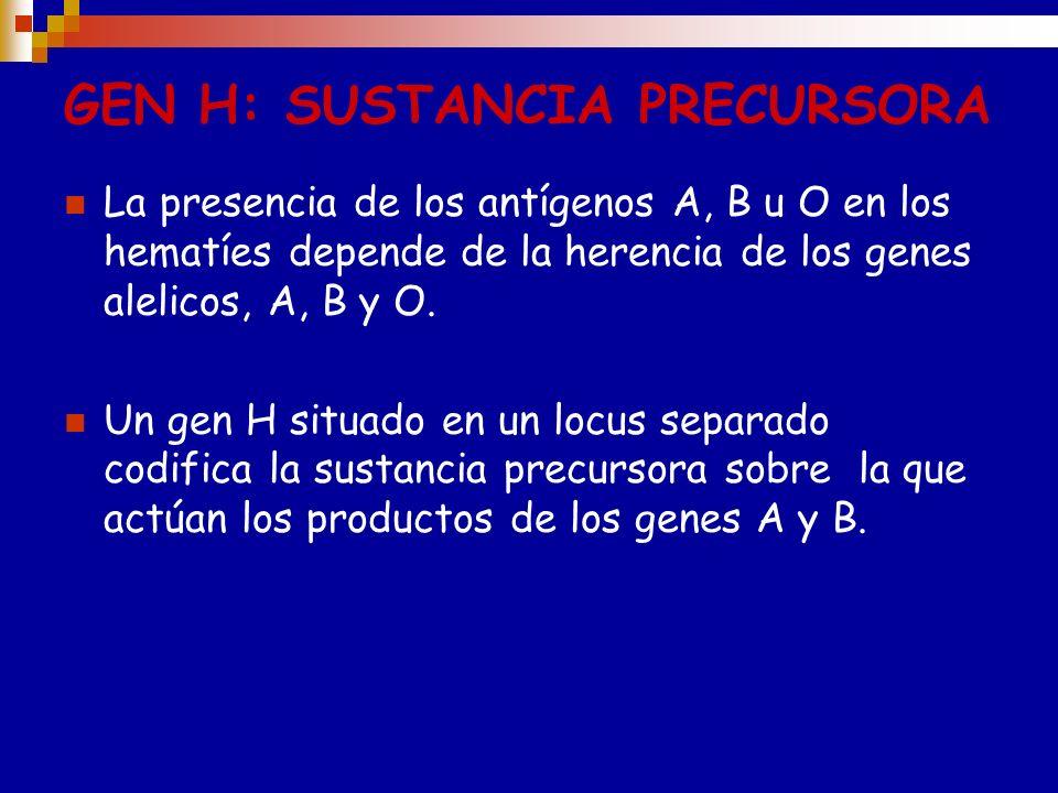 Sustancia precursora TIPO I Sustancia precursora TIPO II Glc-NAC Gal Glc-NAC Gal GR Unión 1,3Unión 1,4 El precursor de TIPO I tiene una galactosa term