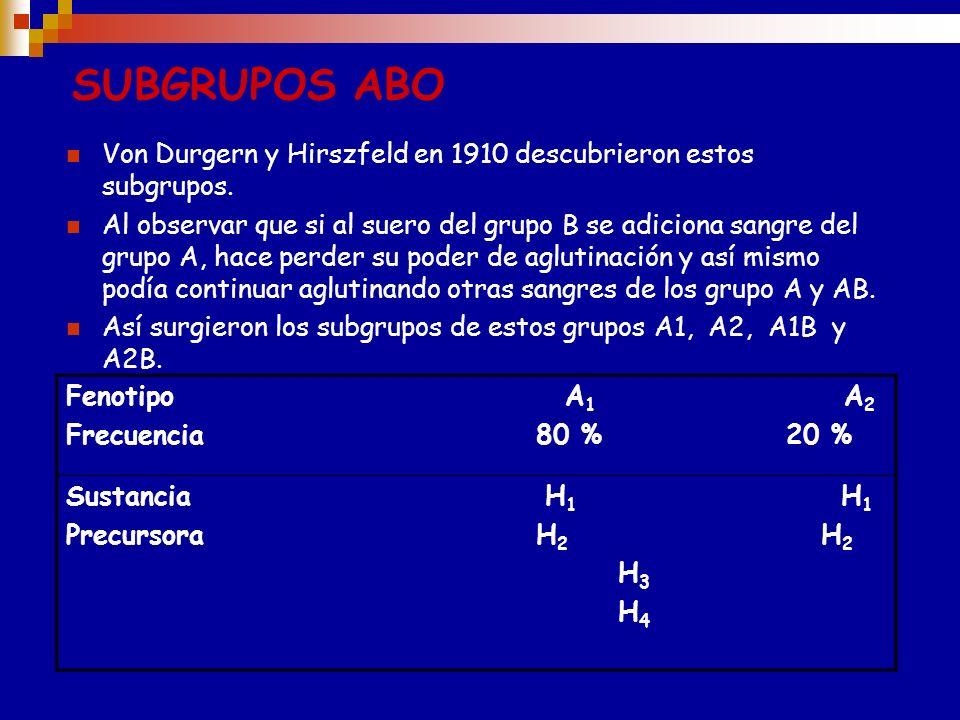 ANTÍGENO A (TIPO II) Glc-NAC Gal GR Fuc Gal Glc-NAC Gal GR Fuc NAcGal Gal ANTÍGENO B (TIPO II) 1,3 N-acetilgalactosaminiltransferasa 1,3 galactosiltra