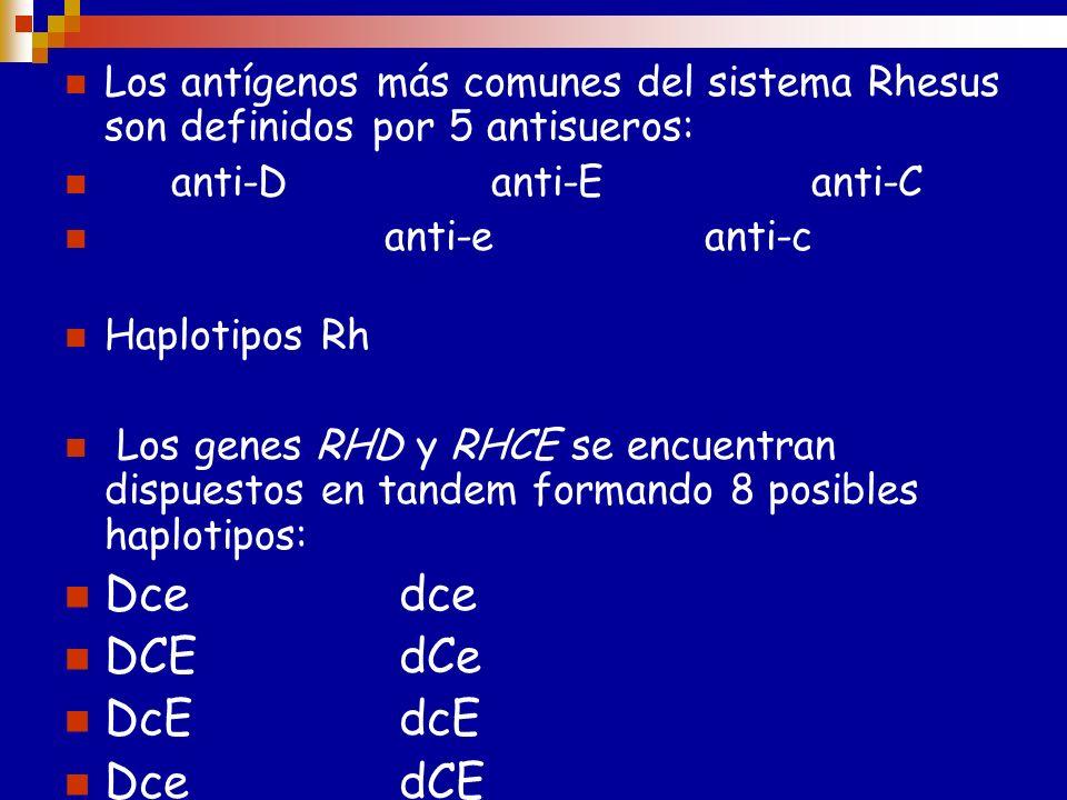 Complejo Rh RhD