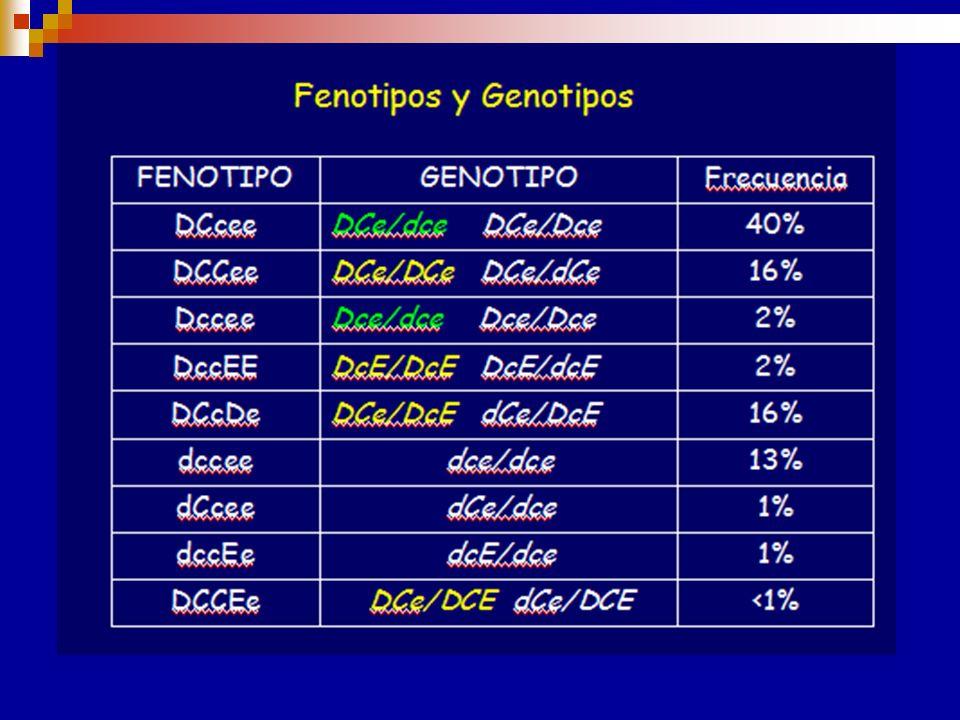 Haplotipos Rh Variación de frecuencias en los distintos grupos étnicos. El gen RHD no codifica antígenos antitéticos, la cigosidad del mismo en los di