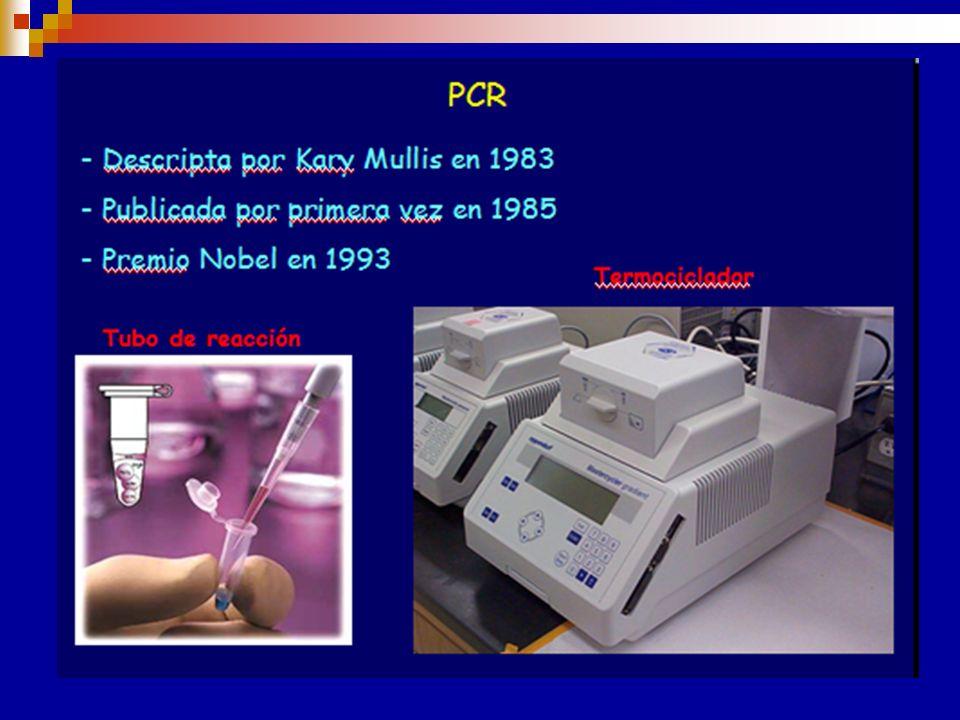Genotipificación Rh La determinación de las bases genéticas del Sistema Rh ha permitido el desarrollo de métodos de biología molecular para analizar l