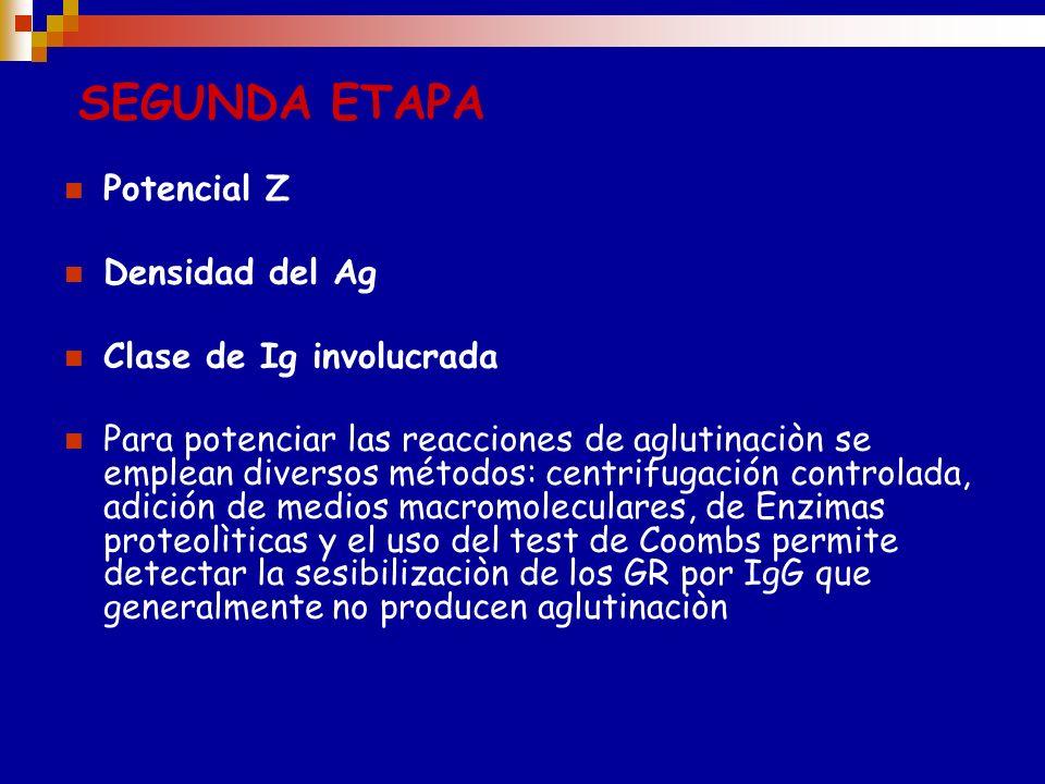 PRIMERA ETAPA Está influenciada por las siguientes variables: Temperatura: IgM reaccionan a 4ºC, IgG a37ºC Afinidad entre Ag y Ac PH optimo :6.5 y 7.6