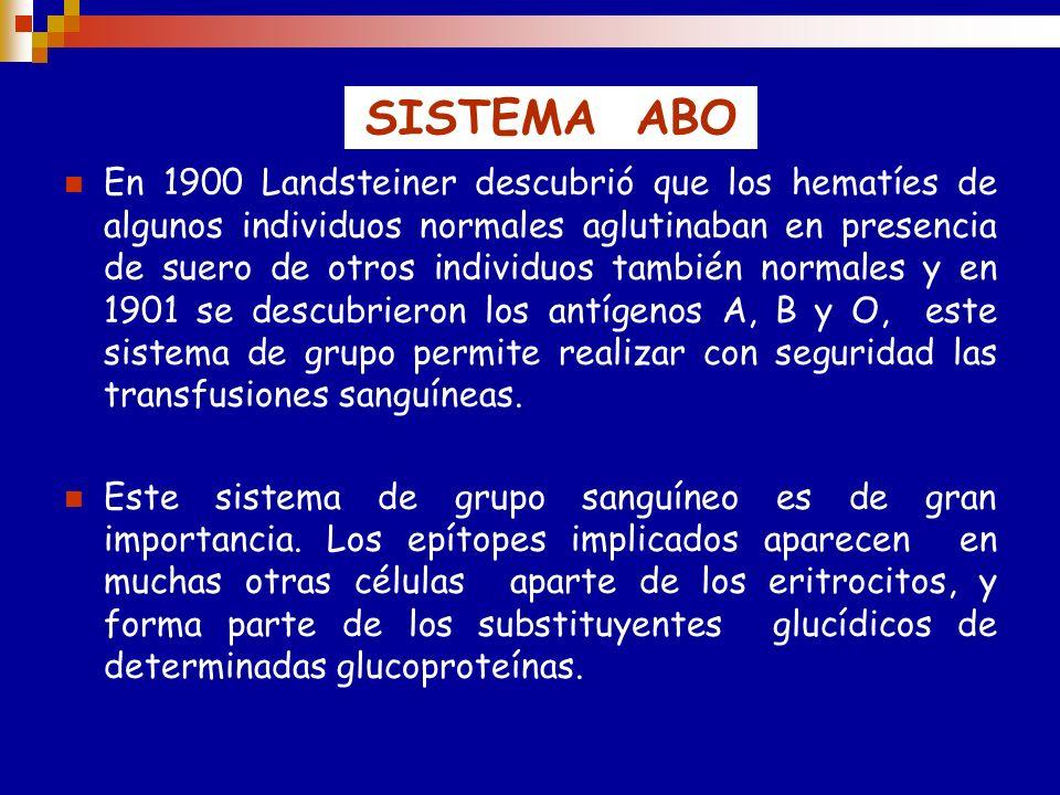 SISTEMA ABO En 1900 Landsteiner descubrió que los hematíes de algunos individuos normales aglutinaban en presencia de suero de otros individuos también normales y en 1901 se descubrieron los antígenos A, B y O, este sistema de grupo permite realizar con seguridad las transfusiones sanguíneas.