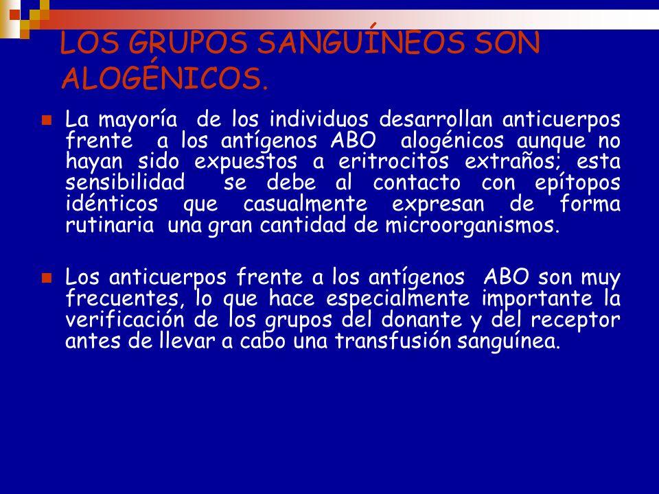 LOS GRUPOS SANGUÍNEOS SON ALOGÉNICOS.