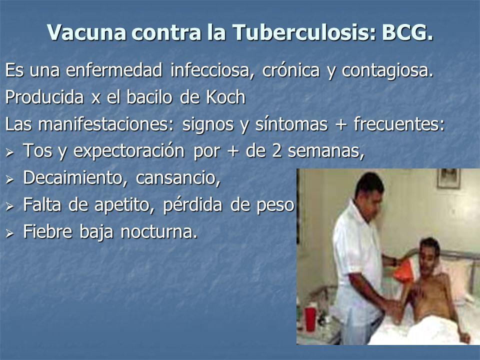 Vacuna contra la Tuberculosis: BCG. Es una enfermedad infecciosa, crónica y contagiosa. Producida x el bacilo de Koch Las manifestaciones: signos y sí