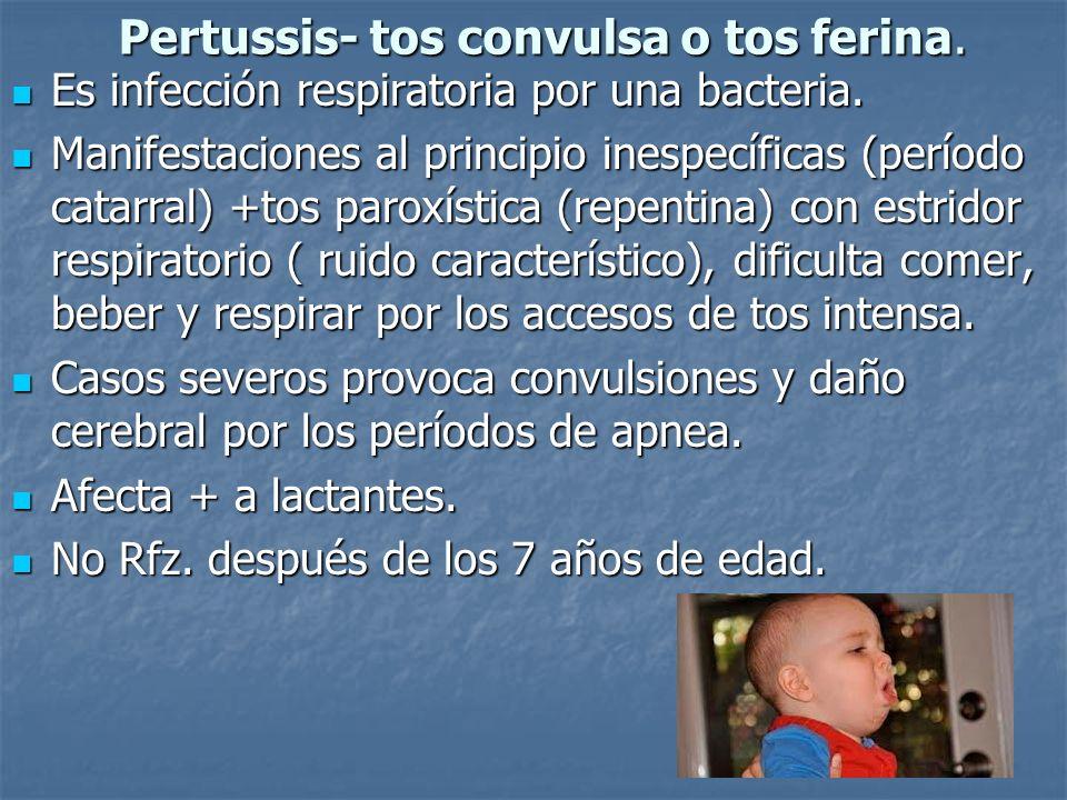 Pertussis- tos convulsa o tos ferina. Es infección respiratoria por una bacteria. Es infección respiratoria por una bacteria. Manifestaciones al princ