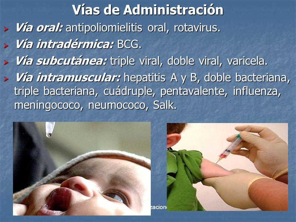 División Inmunizaciones 2011 41 Vías de Administración Vía oral: antipoliomielitis oral, rotavirus. Vía oral: antipoliomielitis oral, rotavirus. Vía i