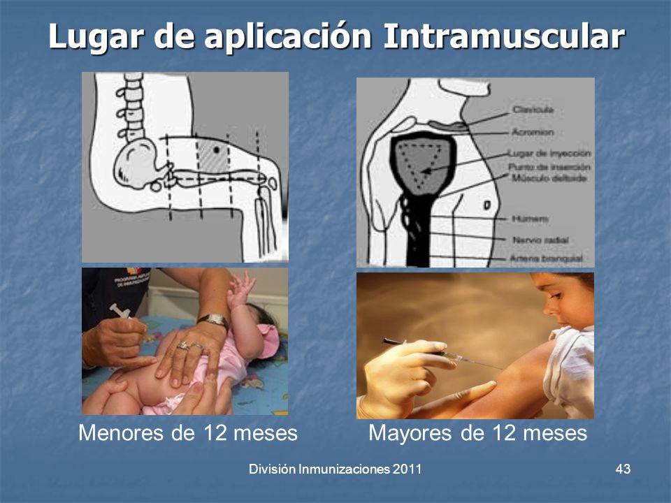 División Inmunizaciones 201143 Lugar de aplicación Intramuscular Menores de 12 mesesMayores de 12 meses