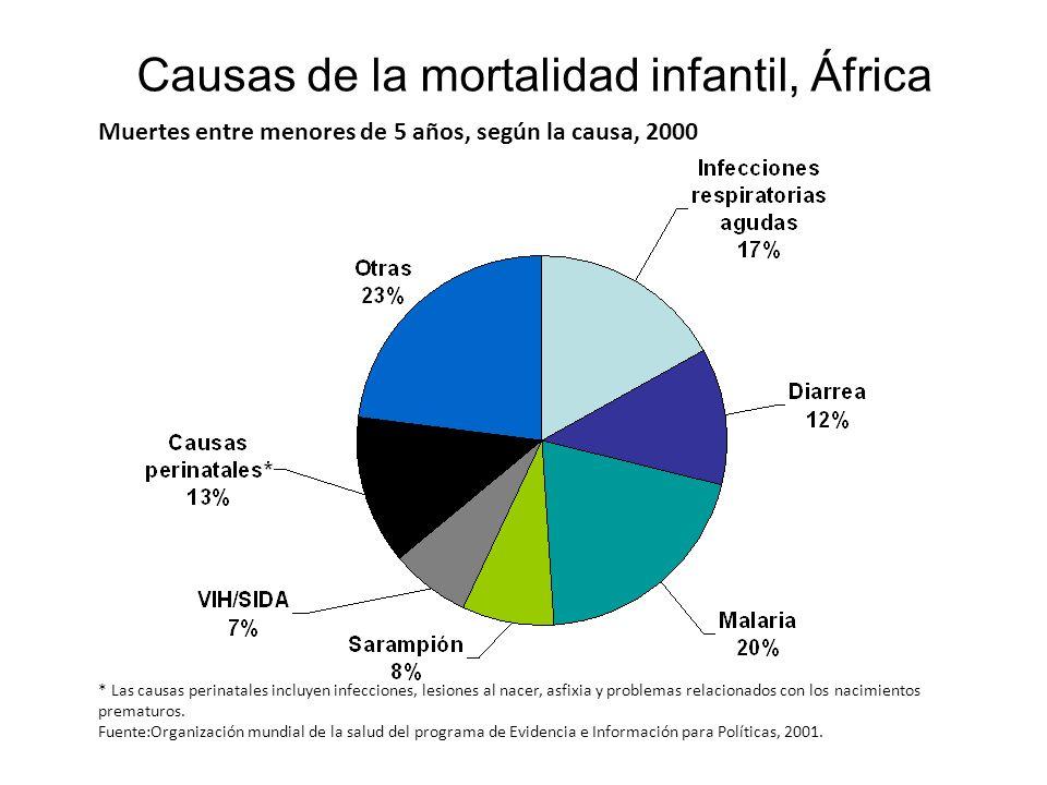Causas de la mortalidad infantil, África Muertes entre menores de 5 años, según la causa, 2000 * Las causas perinatales incluyen infecciones, lesiones
