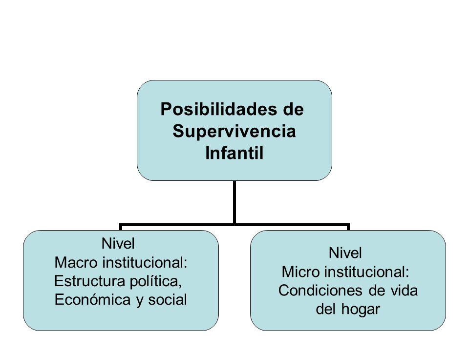 Posibilidades de Supervivencia Infantil Nivel Macro institucional: Estructura política, Económica y social Nivel Micro institucional: Condiciones de v