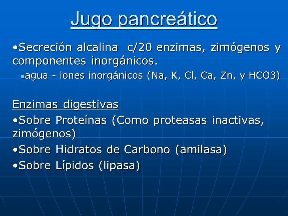 Jugo pancreático Secreción alcalina c/20 enzimas, zimógenos y componentes inorgánicos.Secreción alcalina c/20 enzimas, zimógenos y componentes inorgán