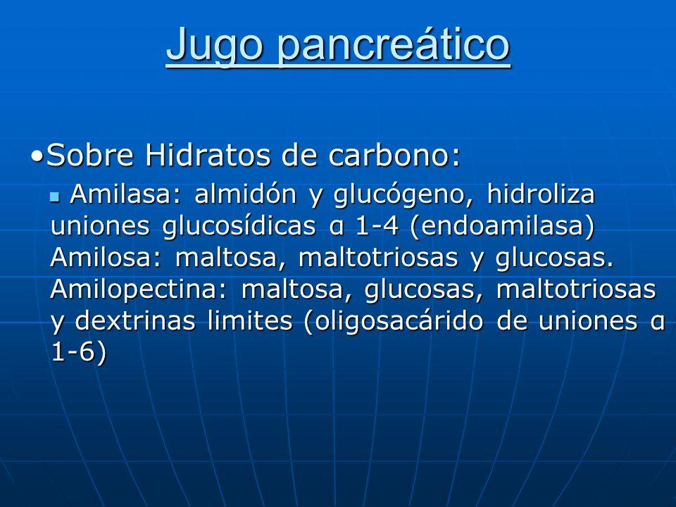 Jugo pancreático Sobre Hidratos de carbono:Sobre Hidratos de carbono: Amilasa: almidón y glucógeno, hidroliza uniones glucosídicas α 1-4 (endoamilasa)