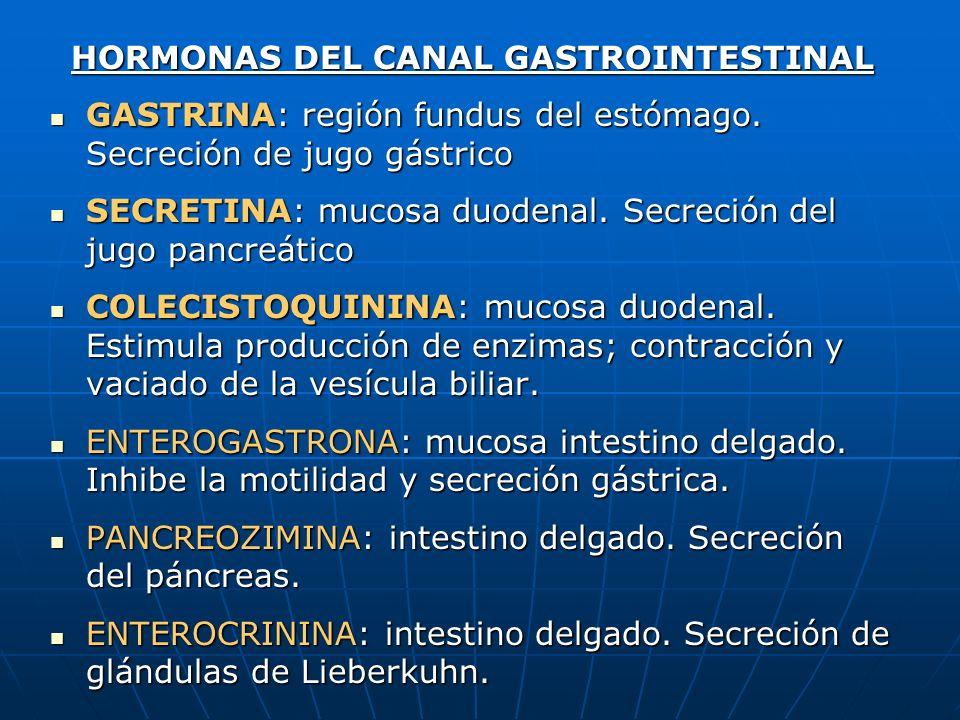 HORMONAS DEL CANAL GASTROINTESTINAL GASTRINA: región fundus del estómago. Secreción de jugo gástrico GASTRINA: región fundus del estómago. Secreción d