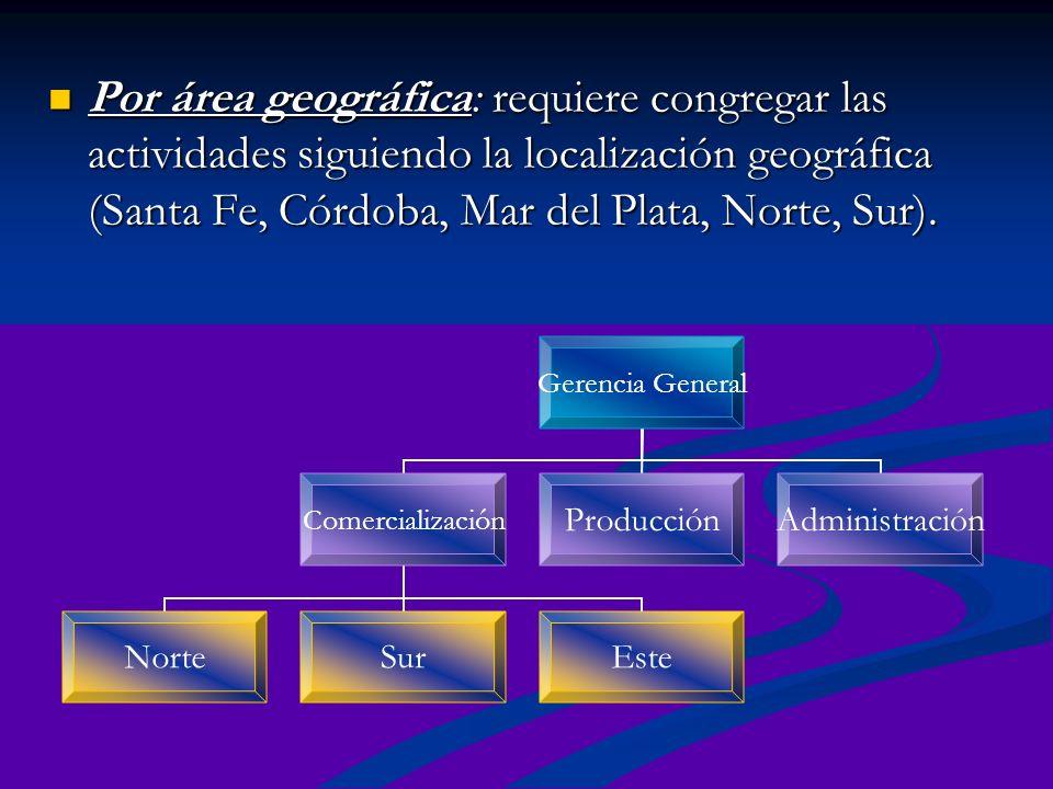 Por área geográfica: requiere congregar las actividades siguiendo la localización geográfica (Santa Fe, Córdoba, Mar del Plata, Norte, Sur). Por área