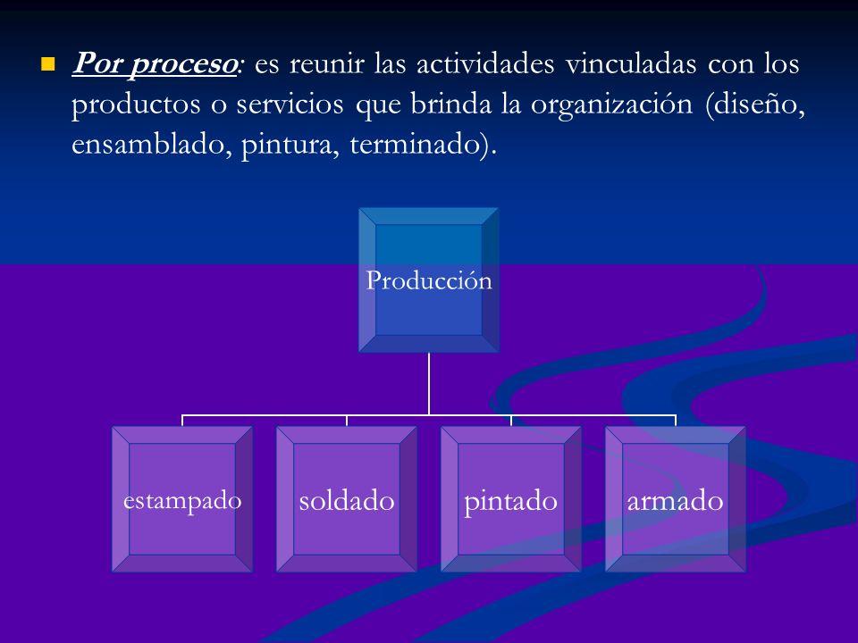 Por proceso: es reunir las actividades vinculadas con los productos o servicios que brinda la organización (diseño, ensamblado, pintura, terminado). P