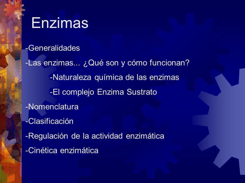 Enzimas -Generalidades -Las enzimas... ¿Qué son y cómo funcionan? -Naturaleza química de las enzimas -El complejo Enzima Sustrato -Nomenclatura -Clasi