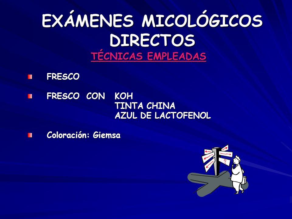EXÁMENES MICOLÓGICOS DIRECTOS TÉCNICAS EMPLEADAS FRESCO FRESCO CON KOH TINTA CHINA TINTA CHINA AZUL DE LACTOFENOL AZUL DE LACTOFENOL Coloración: Giems