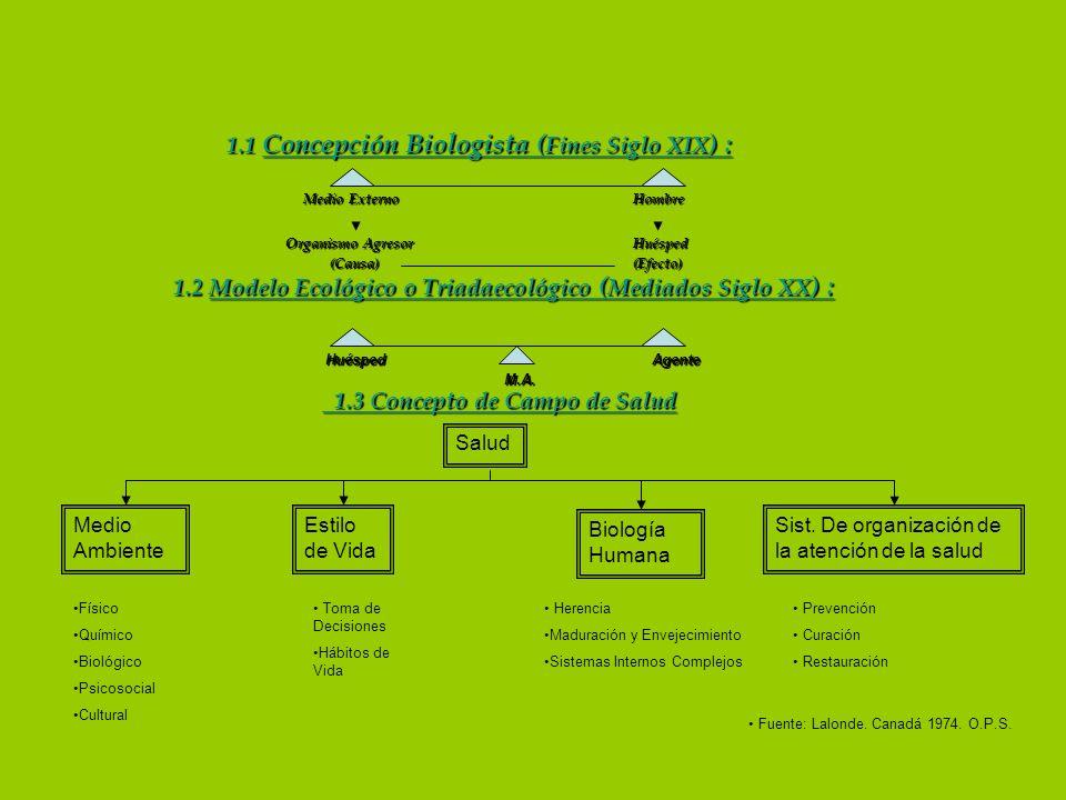 1.1 Concepción Biologista ( Fines Siglo XIX ) : 1.1 Concepción Biologista ( Fines Siglo XIX ) : Medio Externo Hombre Organismo Agresor Huésped (Causa)