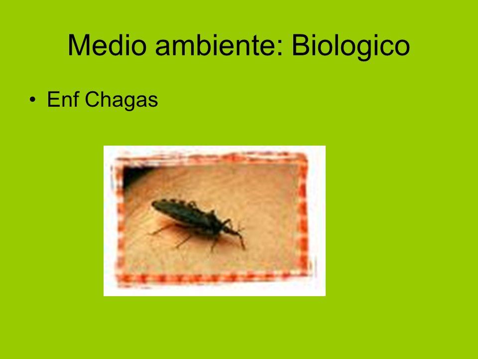 Medio ambiente: Biologico Enf Chagas