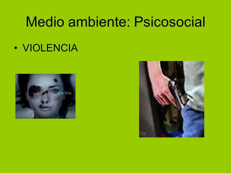 Medio ambiente: Psicosocial VIOLENCIA