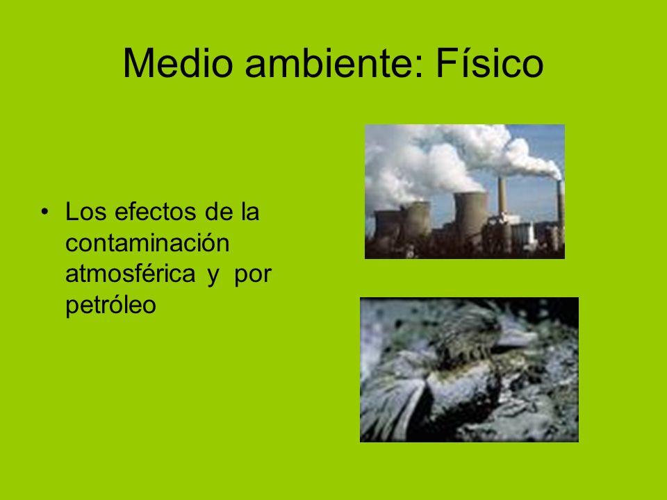 Medio ambiente: Físico Los efectos de la contaminación atmosférica y por petróleo