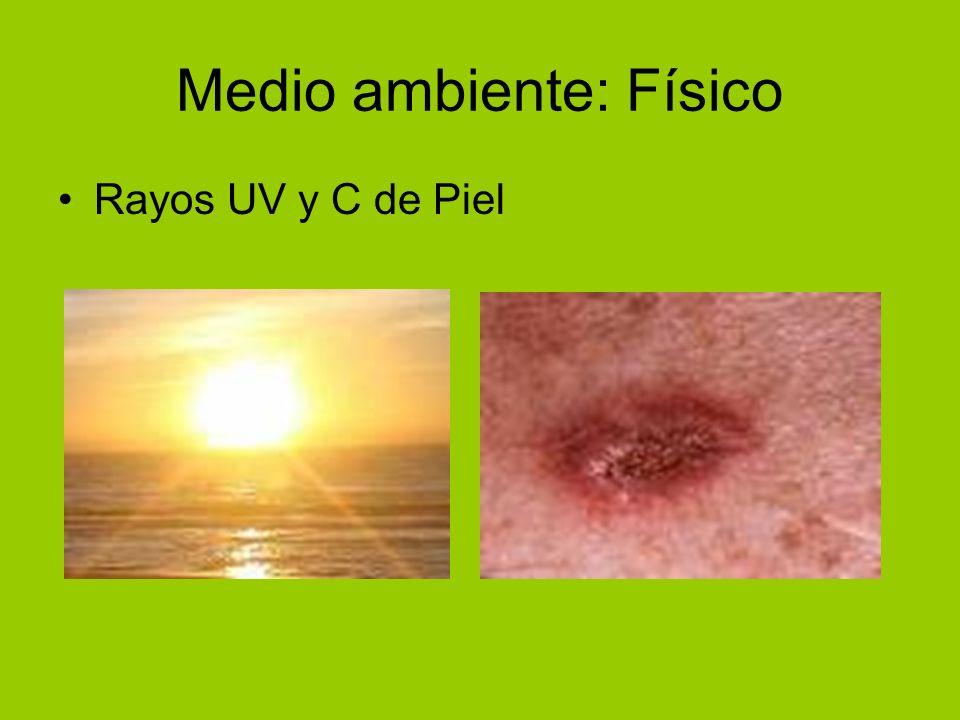Medio ambiente: Físico Rayos UV y C de Piel