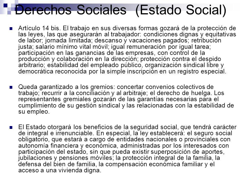 Derechos Sociales (Estado Social) Artículo 14 bis. El trabajo en sus diversas formas gozará de la protección de las leyes, las que asegurarán al traba