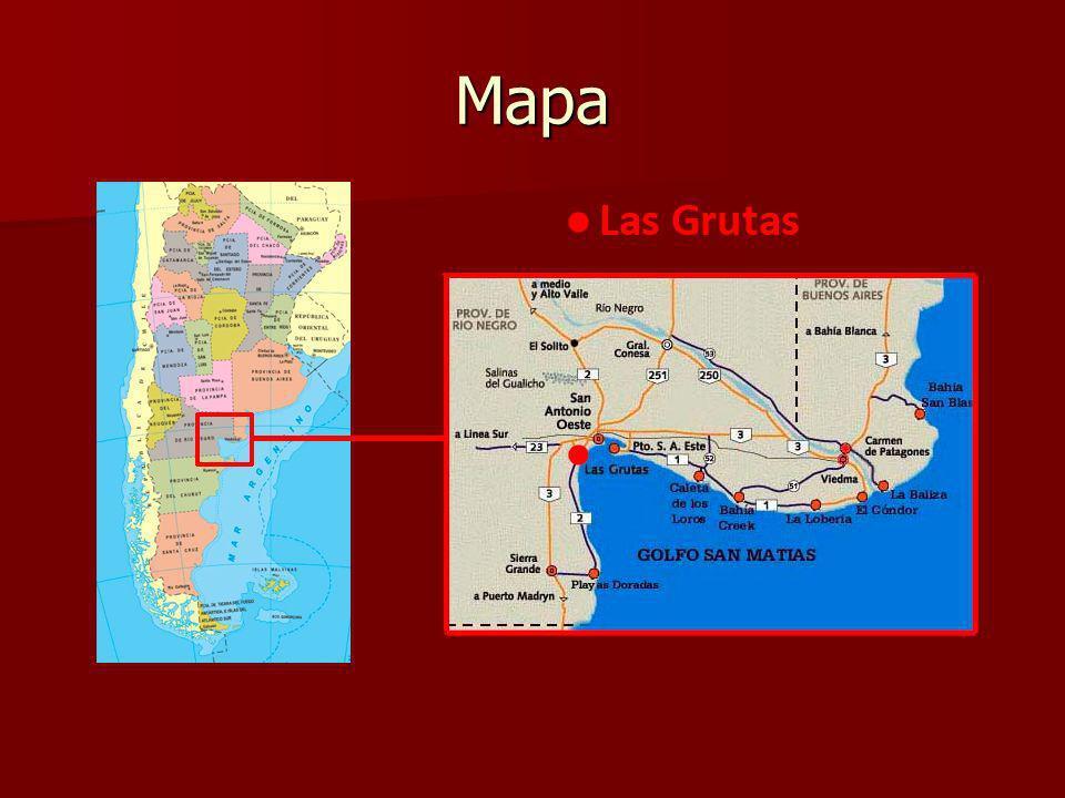 Fuentes http://es.wikipedia.org/wiki/Las_Grutas#C lima http://es.wikipedia.org/wiki/Las_Grutas#C lima http://es.wikipedia.org/wiki/Las_Grutas#C lima http://es.wikipedia.org/wiki/Las_Grutas#C lima http://www.lasgrutas.com.ar/index.php http://www.lasgrutas.com.ar/index.php http://www.lasgrutas.com.ar/index.php http://www.patagonia.com.ar/Las+Grutas /478_Bah%C3%ADa+San+Antonio%3A+c oncientizaci%C3%B3n+por+el+medio+a mbiente.html http://www.patagonia.com.ar/Las+Grutas /478_Bah%C3%ADa+San+Antonio%3A+c oncientizaci%C3%B3n+por+el+medio+a mbiente.html http://www.patagonia.com.ar/Las+Grutas /478_Bah%C3%ADa+San+Antonio%3A+c oncientizaci%C3%B3n+por+el+medio+a mbiente.html http://www.patagonia.com.ar/Las+Grutas /478_Bah%C3%ADa+San+Antonio%3A+c oncientizaci%C3%B3n+por+el+medio+a mbiente.html http://www.argentinaturistica.com/inform a/grtiactividades.htm http://www.argentinaturistica.com/inform a/grtiactividades.htm http://www.argentinaturistica.com/inform a/grtiactividades.htm http://www.argentinaturistica.com/inform a/grtiactividades.htm