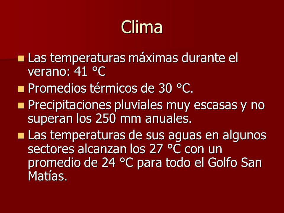 Clima Las temperaturas máximas durante el verano: 41 °C Las temperaturas máximas durante el verano: 41 °C Promedios térmicos de 30 °C.