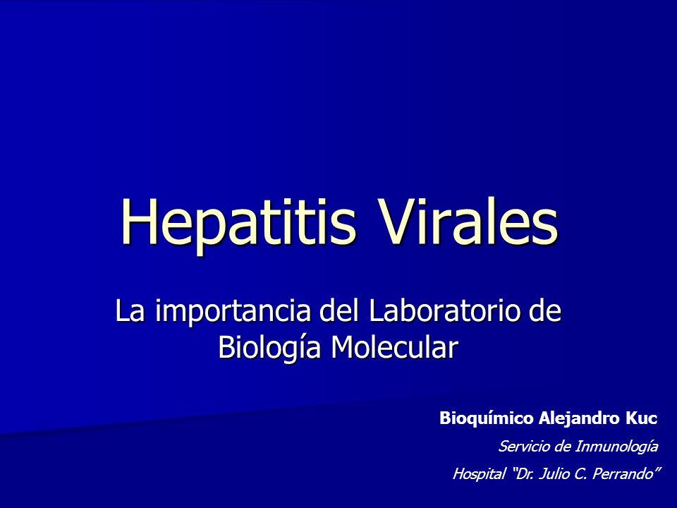Hepatitis Virales La importancia del Laboratorio de Biología Molecular Bioquímico Alejandro Kuc Servicio de Inmunología Hospital Dr. Julio C. Perrando