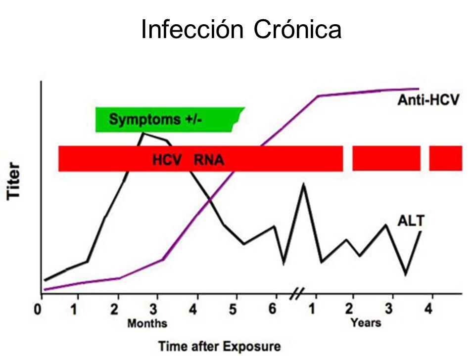 Infección Crónica