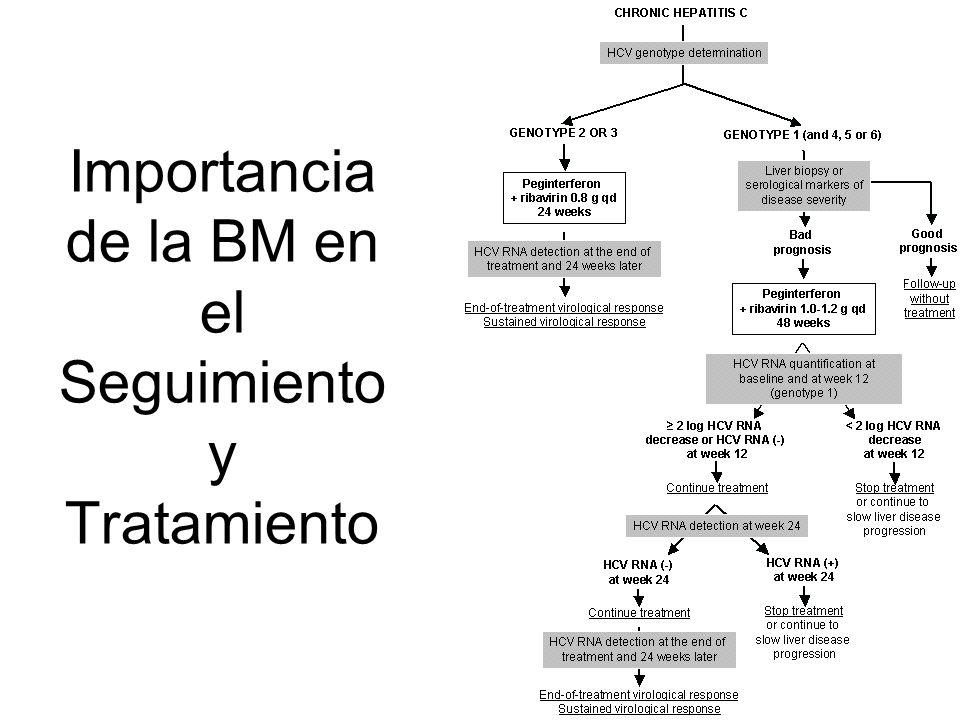 Importancia de la BM en el Seguimiento y Tratamiento