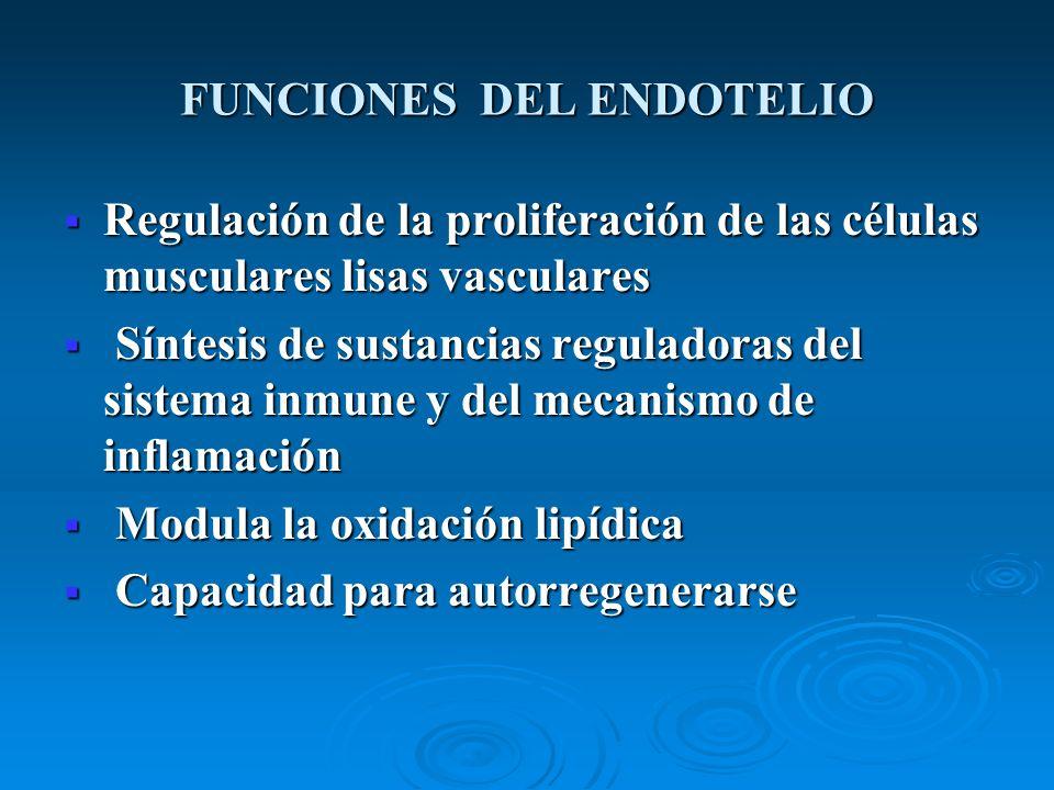 FUNCIONES DEL ENDOTELIO Regulación de la proliferación de las células musculares lisas vasculares Regulación de la proliferación de las células muscul