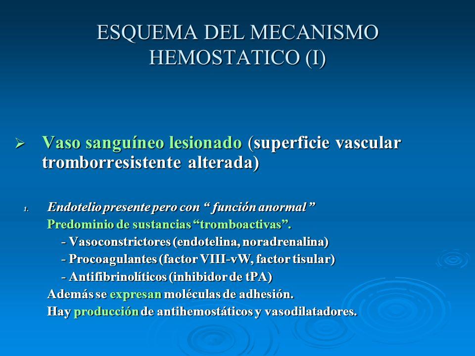 ESQUEMA DEL MECANISMO HEMOSTATICO (I) Vaso sanguíneo lesionado (superficie vascular tromborresistente alterada) Vaso sanguíneo lesionado (superficie v