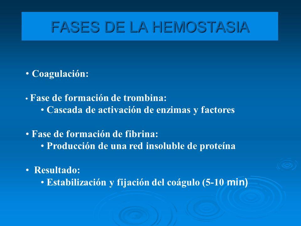 Fibrinolisis: Cicatrización del tejido vascular lesionado Destrucción enzimática de la red de fibrina Resultado: Situación hemostática normal (48-72 horas) FASES DE LA HEMOSTASIA