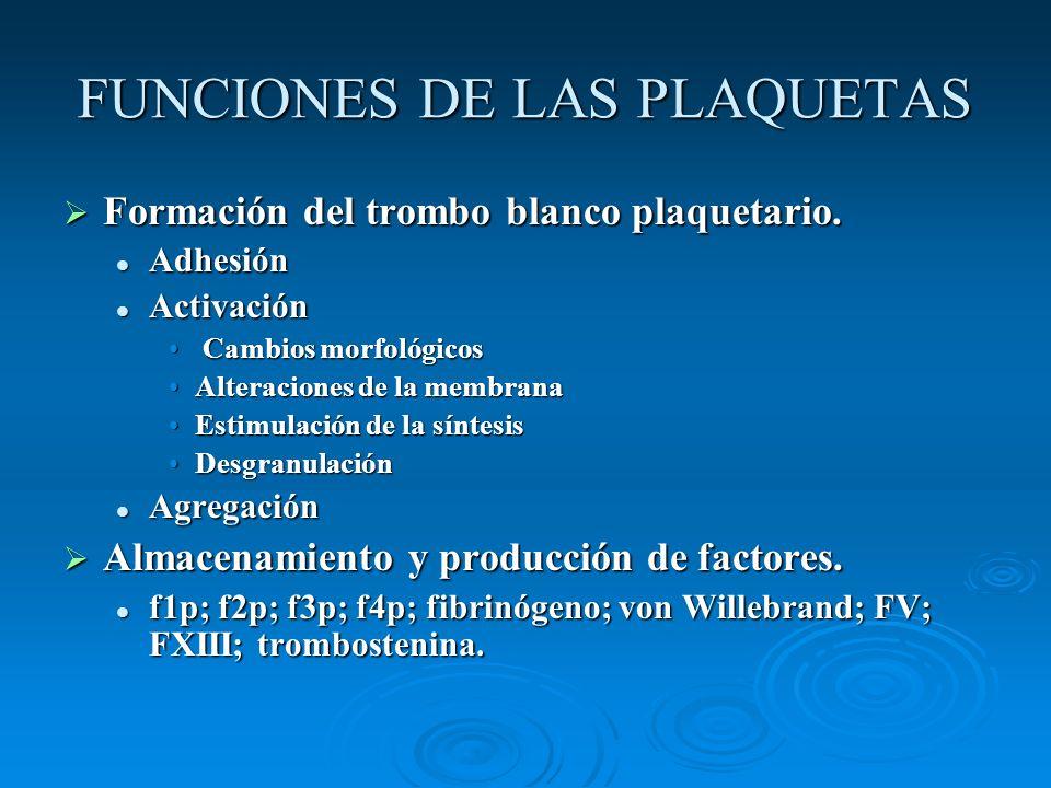 FUNCIONES DE LAS PLAQUETAS Formación del trombo blanco plaquetario. Formación del trombo blanco plaquetario. Adhesión Adhesión Activación Activación C