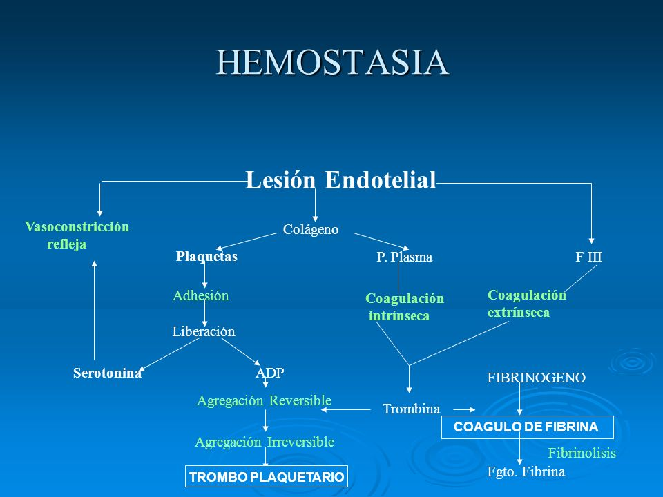 HEMOSTASIA Lesión Endotelial Vasoconstricción refleja Serotonina Colágeno Plaquetas Adhesión Liberación P. Plasma Coagulación intrínseca F III Coagula