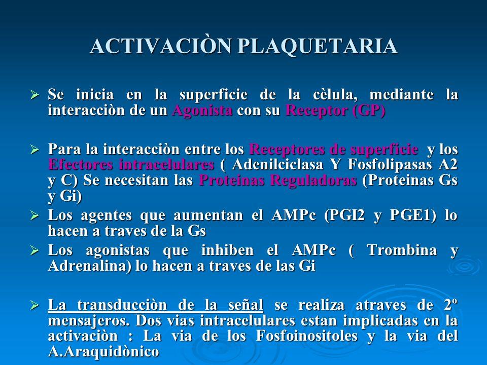 ACTIVACIÒN PLAQUETARIA Se inicia en la superficie de la cèlula, mediante la interacciòn de un Agonista con su Receptor (GP) Se inicia en la superficie