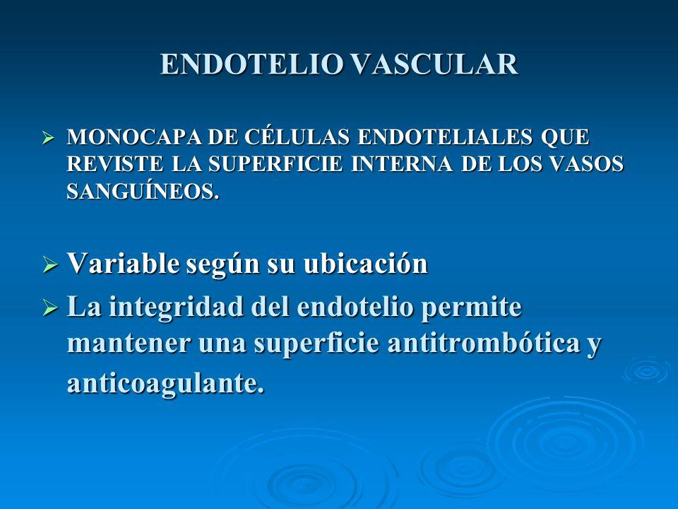 ESQUEMA DEL MECANISMO HEMOSTATICO ( I) VASO SANGUÍNEO INTACTO (endotelio presente) VASO SANGUÍNEO INTACTO (endotelio presente) - Función endotelial normal (superficie vascular tromborresistente) Vasodilatadores (NO)Vasodilatadores (NO) Antigregantes (prostaciclina)Antigregantes (prostaciclina) Anticoagulantes (trombomodulina, heparina)Anticoagulantes (trombomodulina, heparina) Fibrinolíticos (activador del plasminógeno –tPA-)Fibrinolíticos (activador del plasminógeno –tPA-) - Ausencia de activación de las plaquetas y la coagulación.