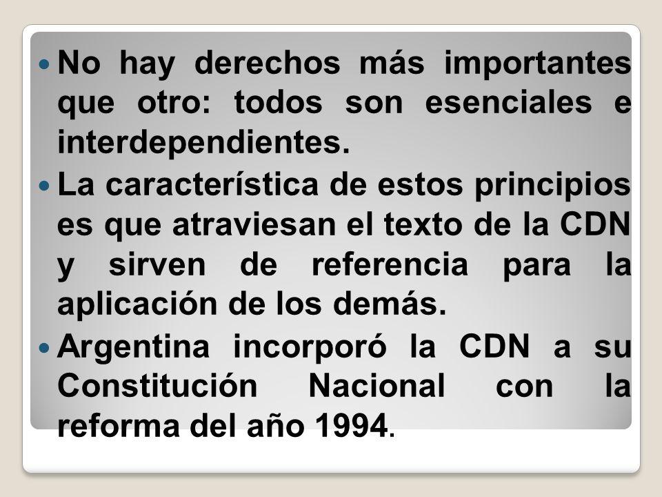 No hay derechos más importantes que otro: todos son esenciales e interdependientes. La característica de estos principios es que atraviesan el texto d
