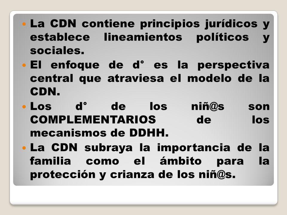 La CDN contiene principios jurídicos y establece lineamientos políticos y sociales. El enfoque de d° es la perspectiva central que atraviesa el modelo