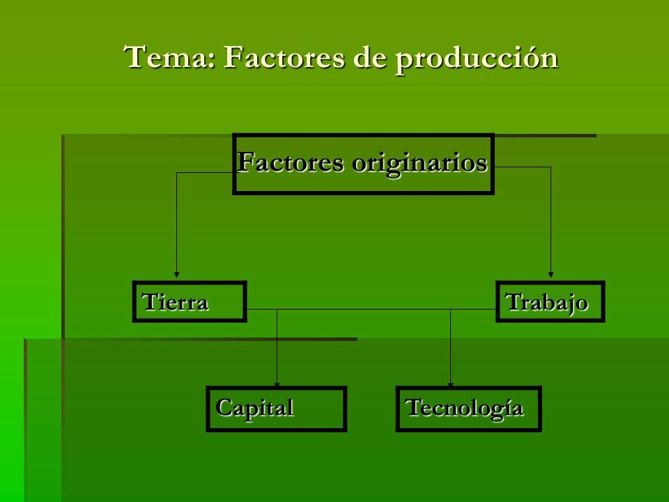 Tema: Factores de producción Factor tierra: es el conjunto de recursos naturales que son utilizados en el proceso de producción (…) y son prioritarios en los estudios geoeconómicos al establecer una relación entre: Sociedad Naturaleza La existencia de recursos abundantes, de calidad y a bajo precio, constituyen un primer factor para impulsar el crecimiento económico de cualquier territorio
