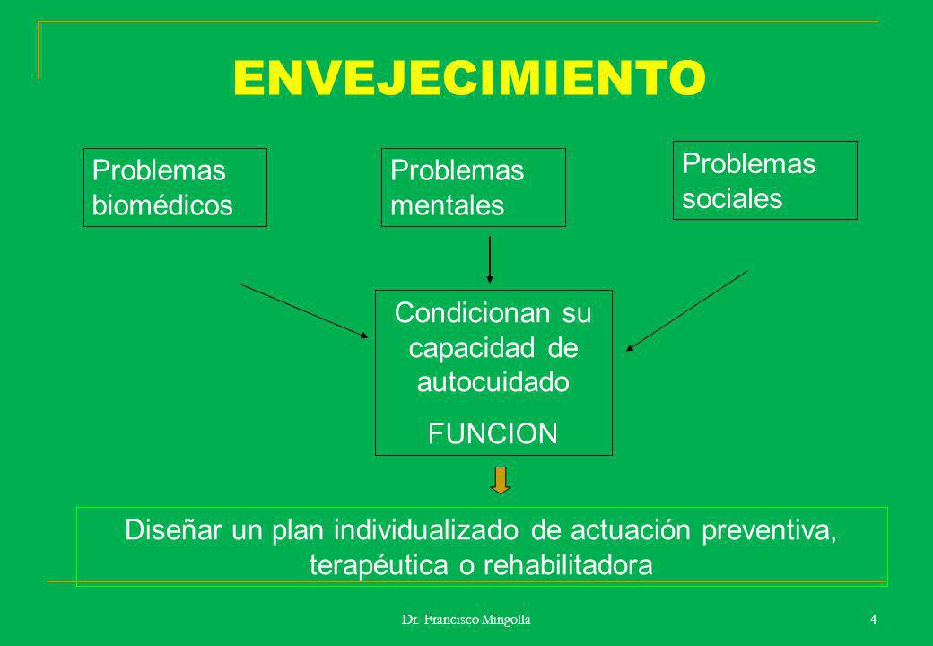 ENVEJECIMIENTO Problemas biomédicos Problemas mentales Problemas sociales Condicionan su capacidad de autocuidado FUNCION Diseñar un plan individualiz