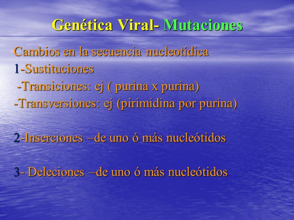 Genética Viral- Mutaciones Cambios en la secuencia nucleotídica 1-Sustituciones -Transiciones: ej ( purina x purina) -Transiciones: ej ( purina x purina) -Transversiones: ej (pirimidina por purina) 2-Inserciones –de uno ó más nucleótidos 3- Deleciones –de uno ó más nucleótidos