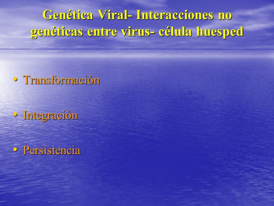 Genética Viral- Interacciones no genéticas entre virus- célula huesped Transformación Transformación Integración Integración Persistencia Persistencia