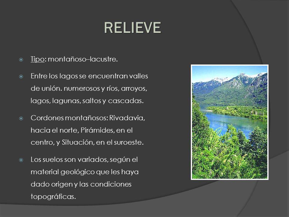 Tipo: montañoso–lacustre. Entre los lagos se encuentran valles de unión. numerosos y ríos, arroyos, lagos, lagunas, saltos y cascadas. Cordones montañ
