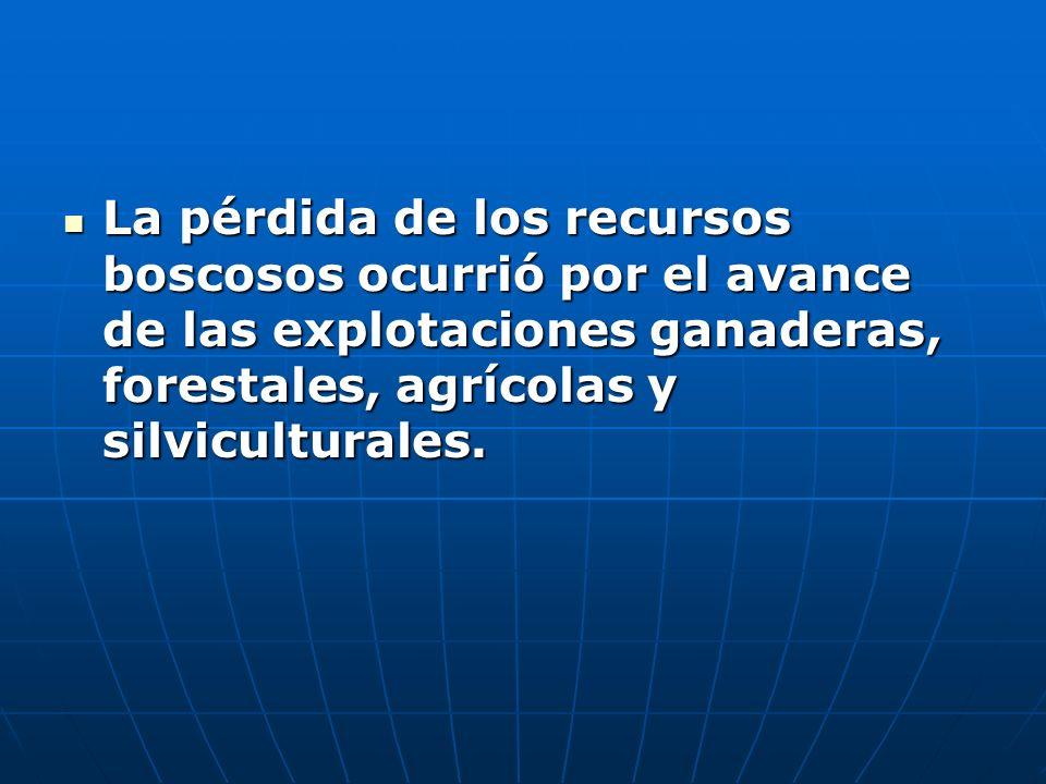 La pérdida de los recursos boscosos ocurrió por el avance de las explotaciones ganaderas, forestales, agrícolas y silviculturales. La pérdida de los r